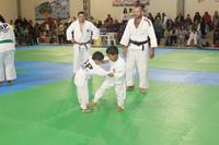 Matriculas_rematriculas_Judo