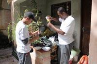 Preveno_Dengue_2011