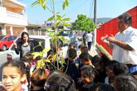 Semana_de_educao_ambiental