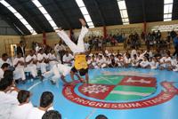 Torneio_Brasileiro_Capoeira