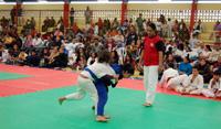 VIII_Festival_Judo