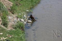 Haiti_Miseria006