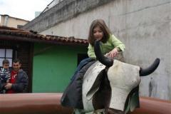 Queima_Alho_018