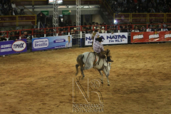 Rodeio_Cajamar_2012_000