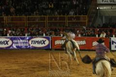Rodeio_Cajamar_2012_003