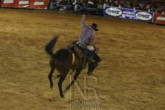 Rodeio_Cajamar_2012_004