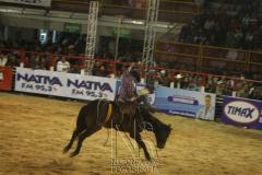 Rodeio_Cajamar_2012_006