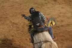 Rodeio_Cajamar_2012_018
