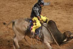 Rodeio_Cajamar_2012_019