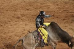 Rodeio_Cajamar_2012_020
