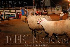 Rodeio_Sexta_02